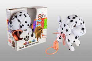 כלב עם רצועה פייפרס דלמטי