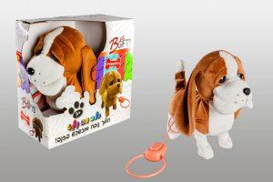 כלב עם רצועה פייפרס באסט  - נובח מכשכש בזב והולך