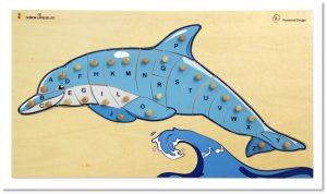 פאזל ABC דולפין
