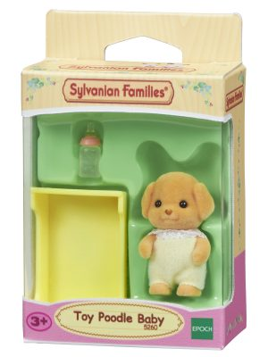 משפחת סילבניאן - תינוק פודל